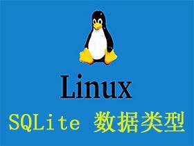 SQLite 数据类型